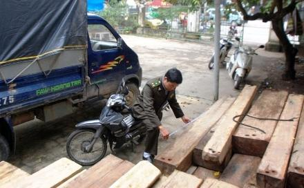 gỗ lậu