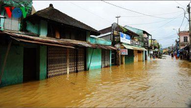 Photo of Bờ biển Thừa Thiên-Huế tiếp tục bị xâm thực nặng sau bão