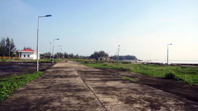 Photo of Cảng cá gần 30 tỷ đồng bỏ hoang
