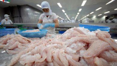 Photo of Xuất khẩu nửa cuối năm 2020: Nhiều kỳ vọng từ EVFTA