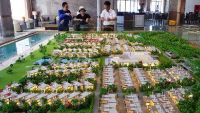Photo of Chọn các mũi đột phá đưa Phú Lộc trở thành trung tâm kinh tế của tỉnh