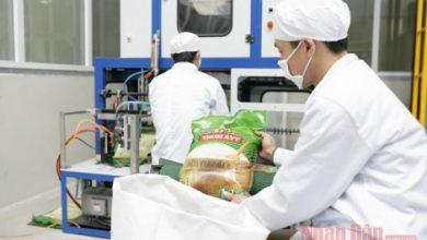 Photo of Nâng cao giá trị gia tăng cho ngành lúa gạo