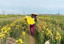 Photo of Phát huy Quỹ Hỗ trợ nông dân